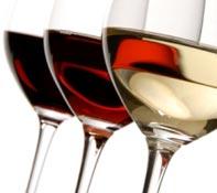 Wijn tour Purmerend